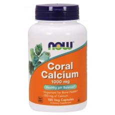 나우 산호 코랄칼슘 CORAL CALCIUM 1000 MG 100정