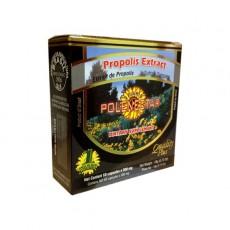 폴리넥타 브라질 그린 비 프로폴리스 POLENECTAR GREEN BEE PROPOLIS 60정