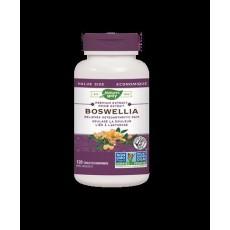 네이쳐스웨이 보스웰리아 유향 관절건강 Boswellia 120정