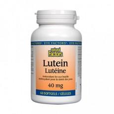 루테인 40 mg Natural Factors Lutein 40 mg 60정