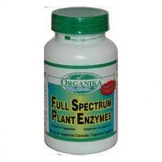 오가니카 천연 소화효소 Full Spectrum Plant Enzyme ,120정